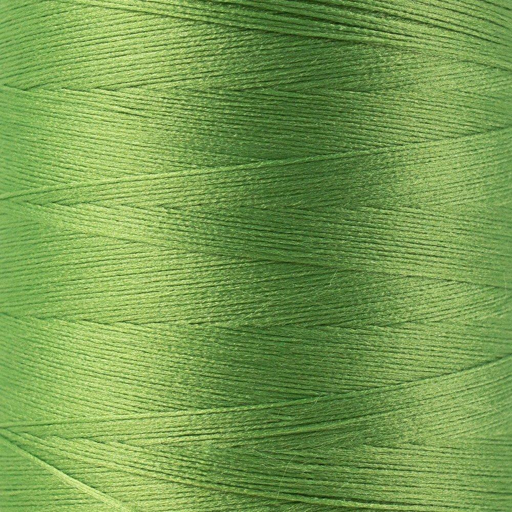 SoftLoc Wooly Poly thread 1005m 45 Palm Leaf