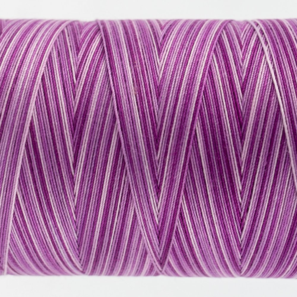 Tutti Varigated Thread  50 Wt 16 Grapes