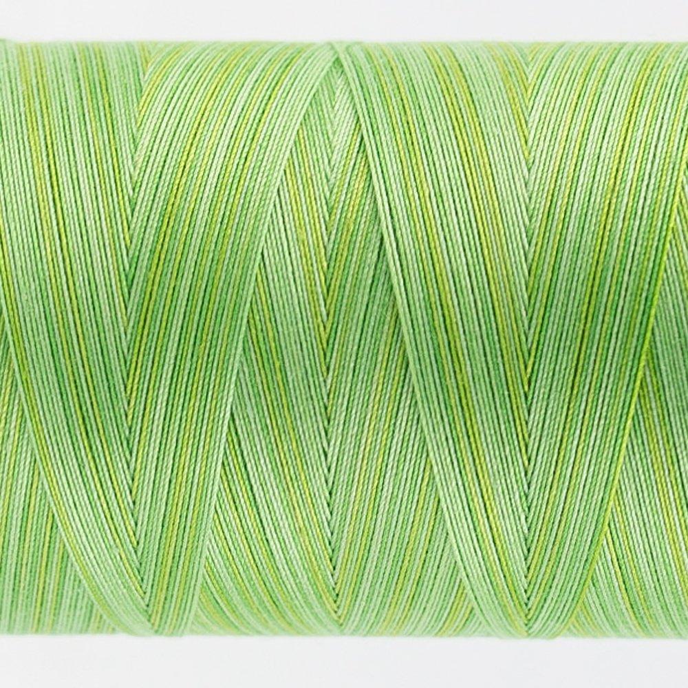 Tutti Varigated Thread  50 Wt 29 Grass
