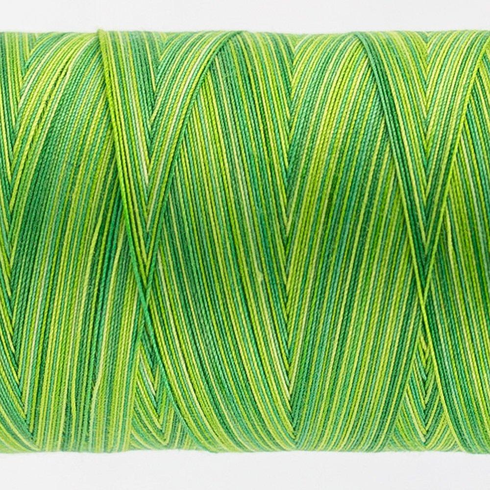 Tutti Varigated Thread  50 Wt 30  Leaves