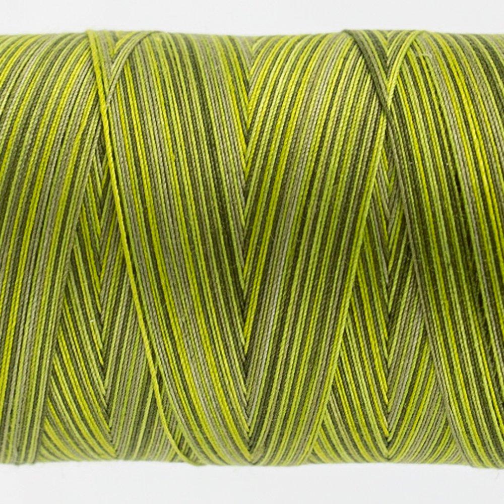 Tutti Varigated Thread  50 Wt 32 Moss