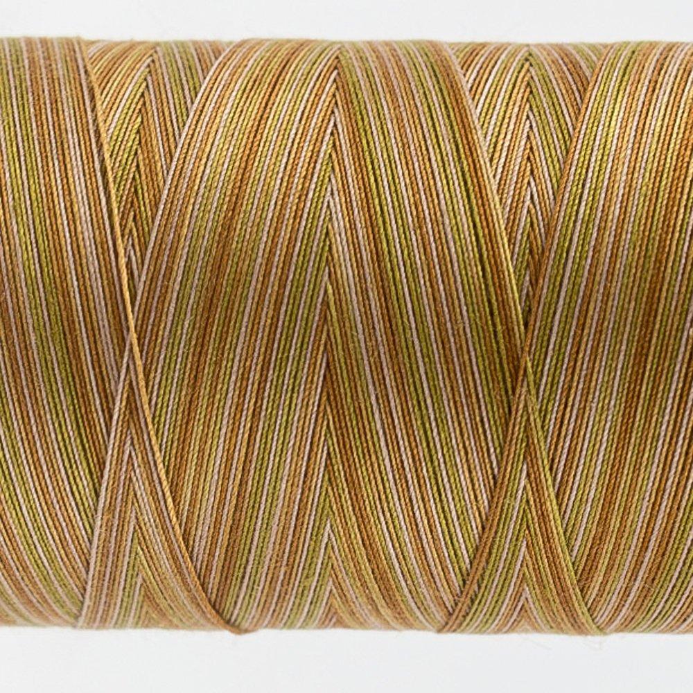 Tutti Varigated Thread  50 Wt 36 Rock