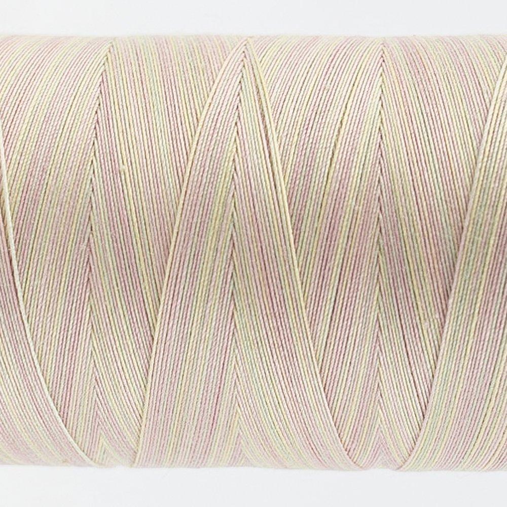 Tutti Varigated Thread  50 Wt 37 Shell