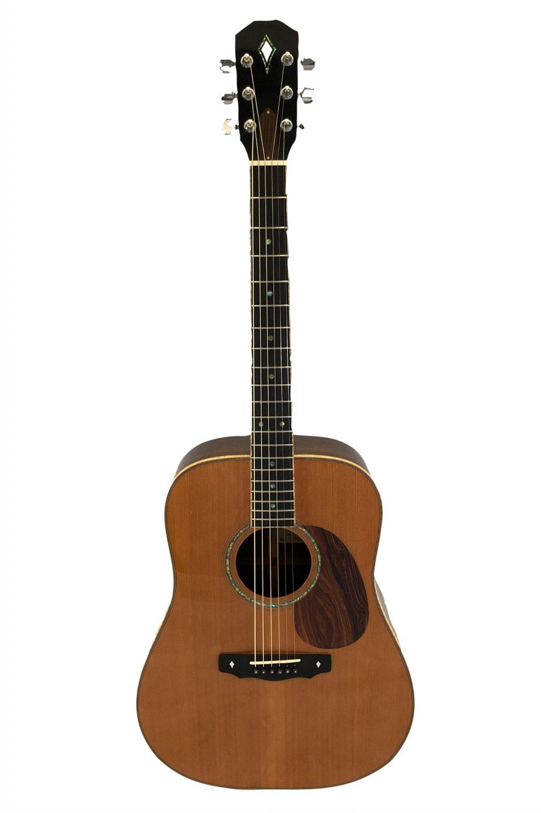 Preowned Custom Sierra Strings Acoustic-Electric Guitar w/Case
