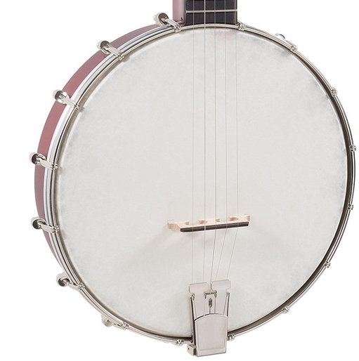 Recording King RKOH-05 Dirty 30's Open Back Banjo w/Bag