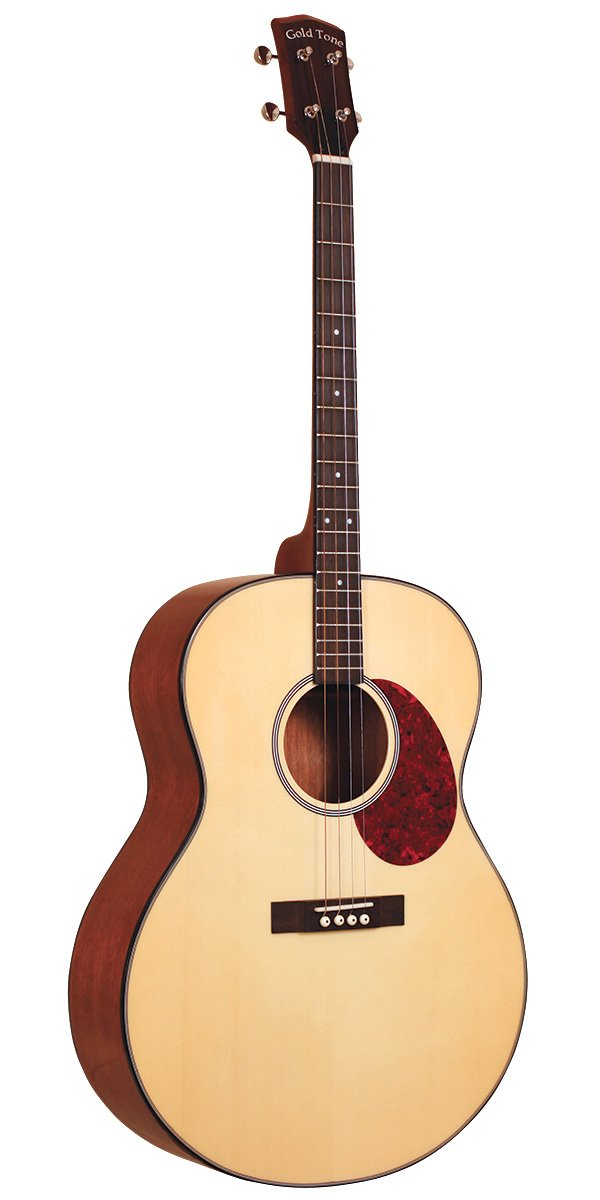 Gold Tone TG-10 Tenor Guitar w/Bag