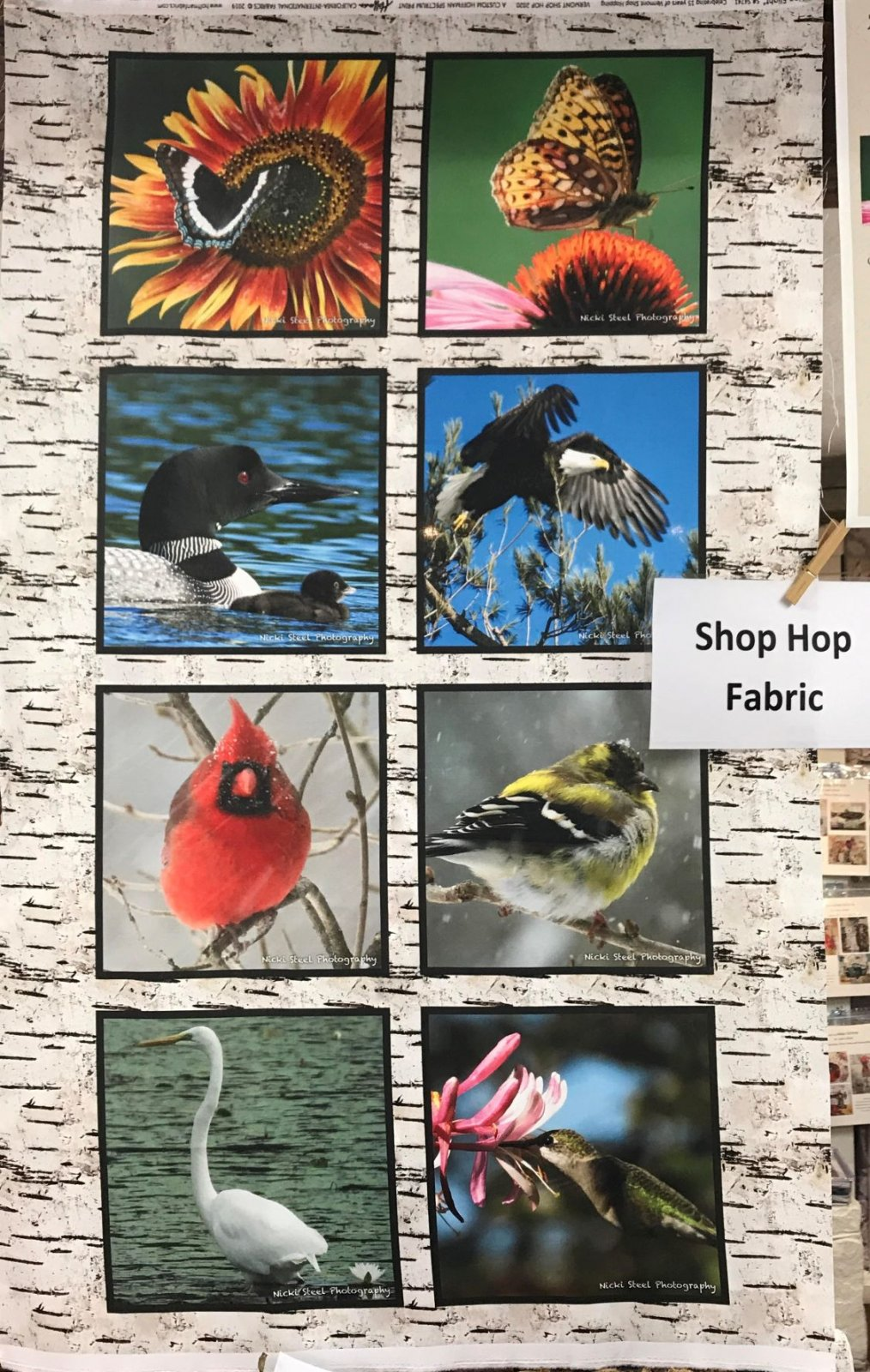 Shop Hop 2020 Panel