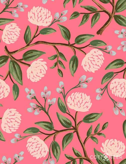 Rifle Paper Company  Peonies Pink