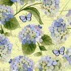Heavenly Hydrangea Y2256-58