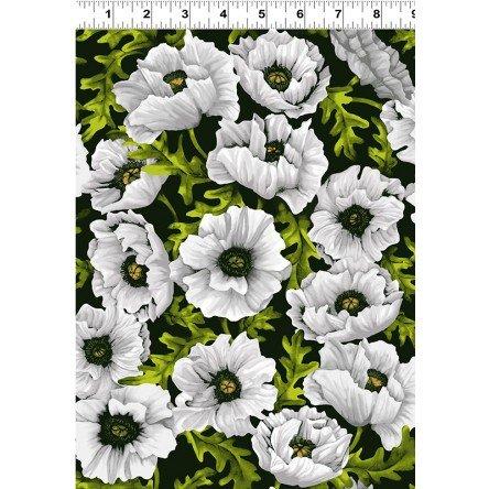 Poppy Poetry Y2658-1