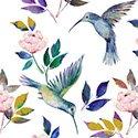 Romance Humingbirds