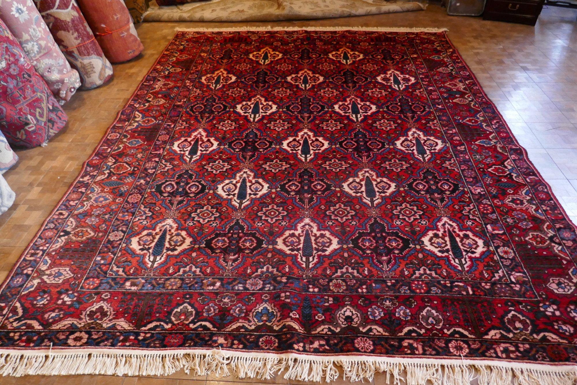 8'11 x 12'0 Persian Bidjar w/ Bahktiari design