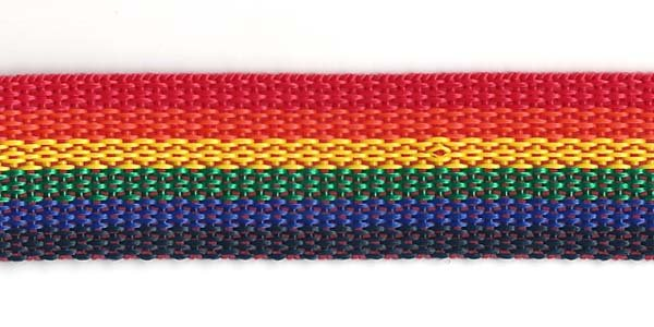 Polypropylene Web - 1 inch - Rainbow