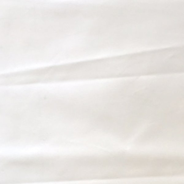 70 Denier Coated Taffeta - White