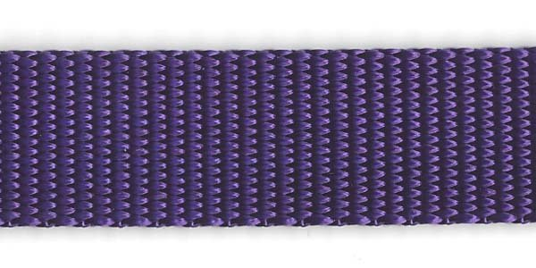 Heavy Nylon Web - 1 inch - Purple