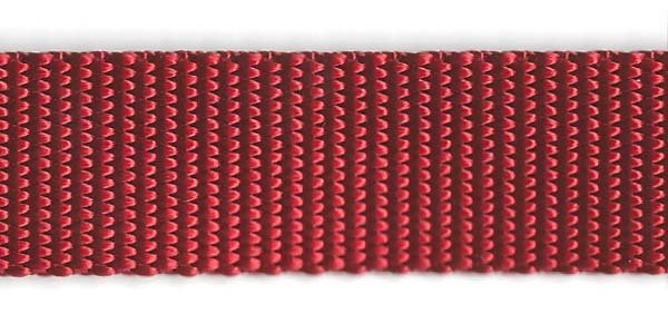 Heavy Nylon Web - 1 inch - Red