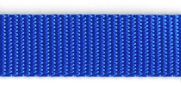 Heavy Nylon Web - 1 inch - Royal