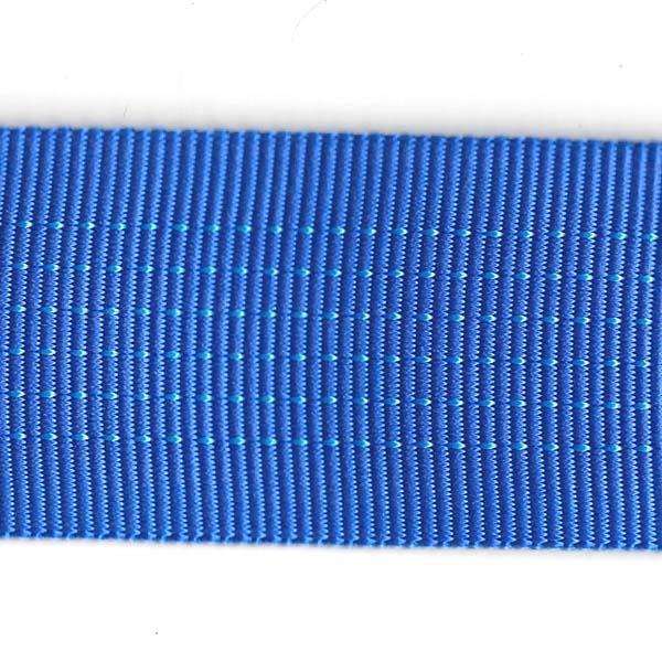 Tubular Nylon Web - 2 inch - Royal