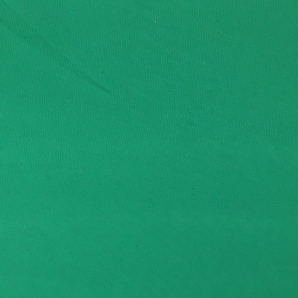 Tactel Lycra Jersey - Kelly Green