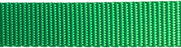 Heavy Nylon Web - 1 inch - Hot Green