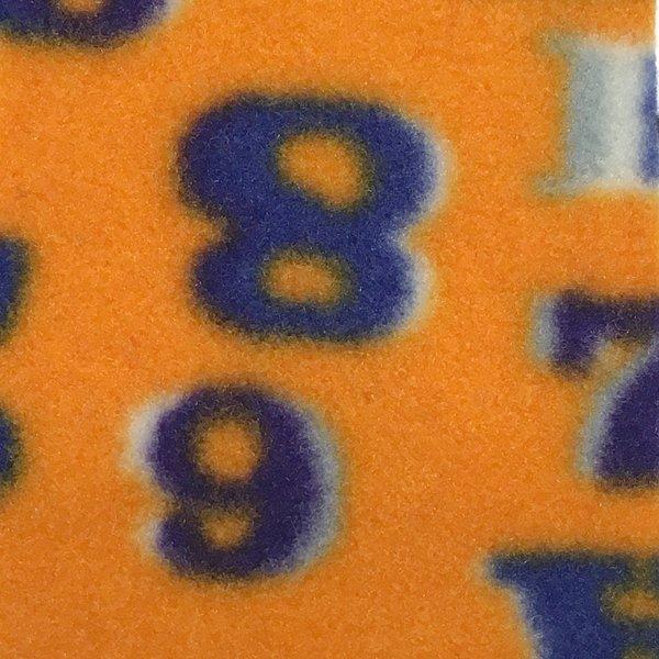 P200 Print - ABC & 123 Primary