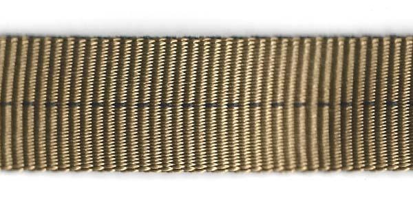 Tubular Nylon Web - 1 inch - Coyote