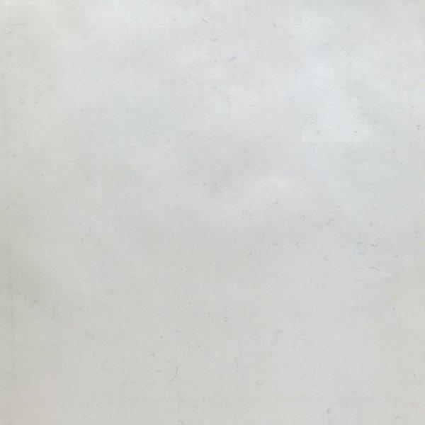 30 Denier Calendered Ripstop - White