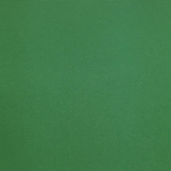 Nylon Taffeta - Green