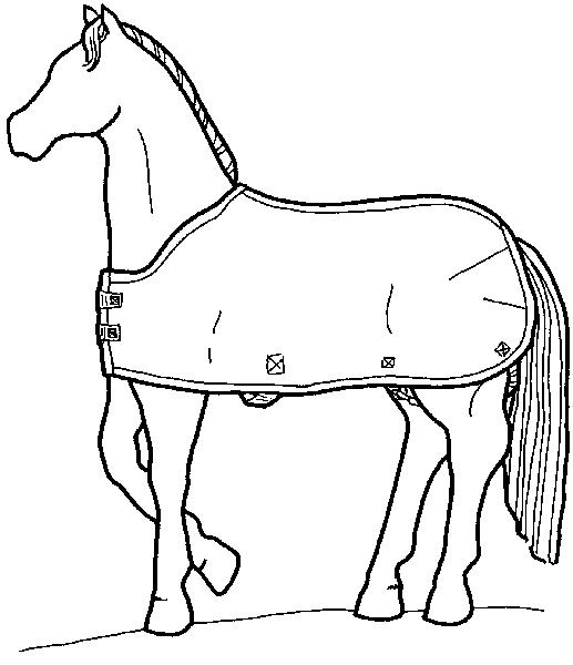 GP87-18 - Horse Blanket - Medium