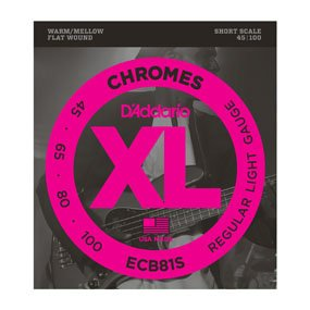 D'Addario ECB81S Bass Chrome Strings (45/100)