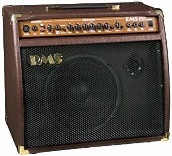 RMS 40W Acoustic Guitar Amp