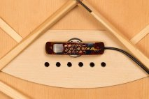 (L.R. Baggs Lyric microphone pickup)