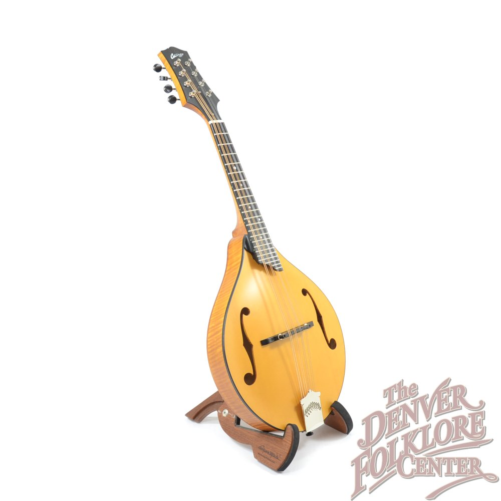 Collings MT Honey Amber