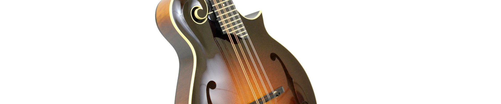 Collings Mandolins Banner
