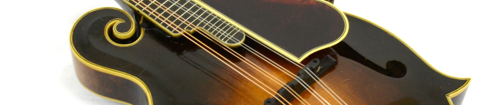 F Style Mandolin Banner