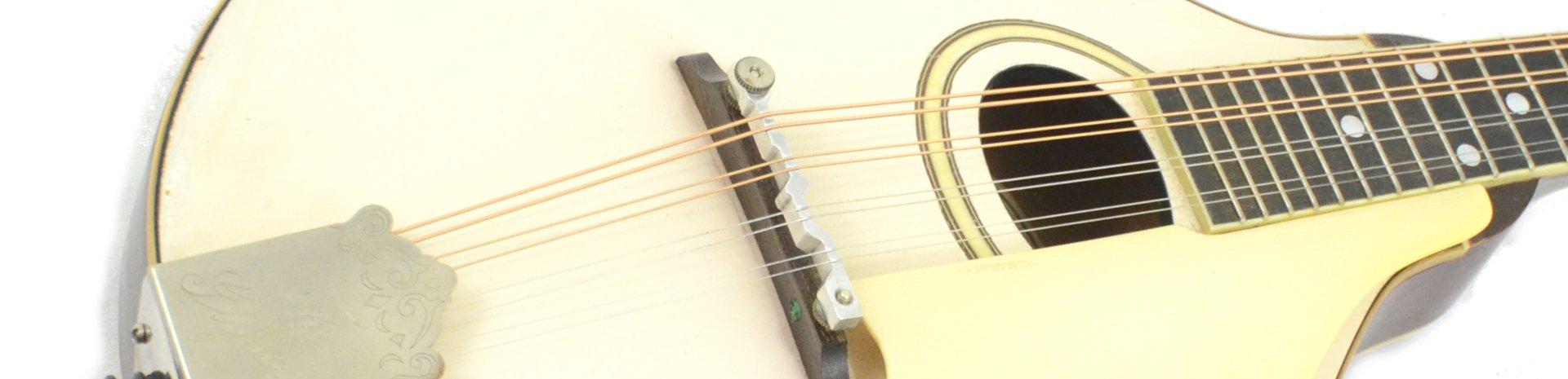 Used and Vintage Mandolin Banner