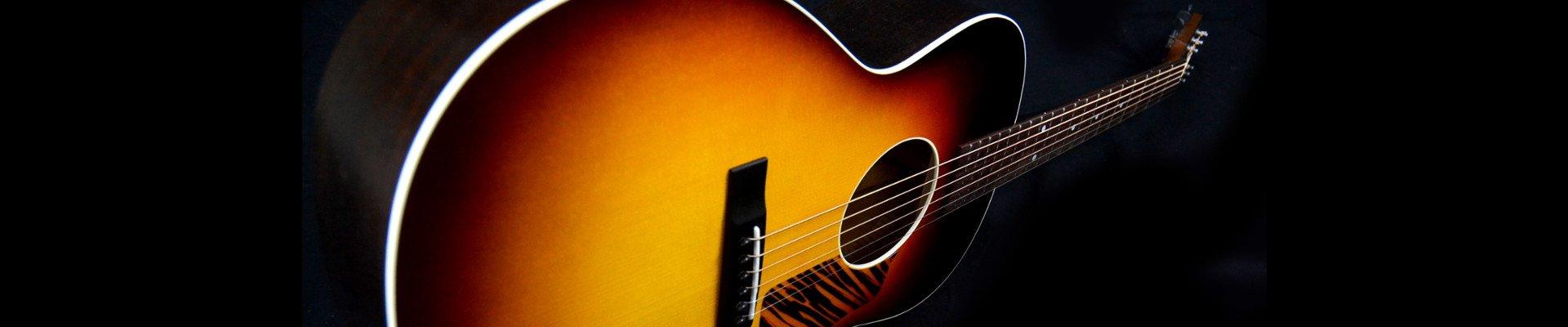 Waterloo Guitars Banner