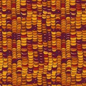 C1719-GLD Indian Corn