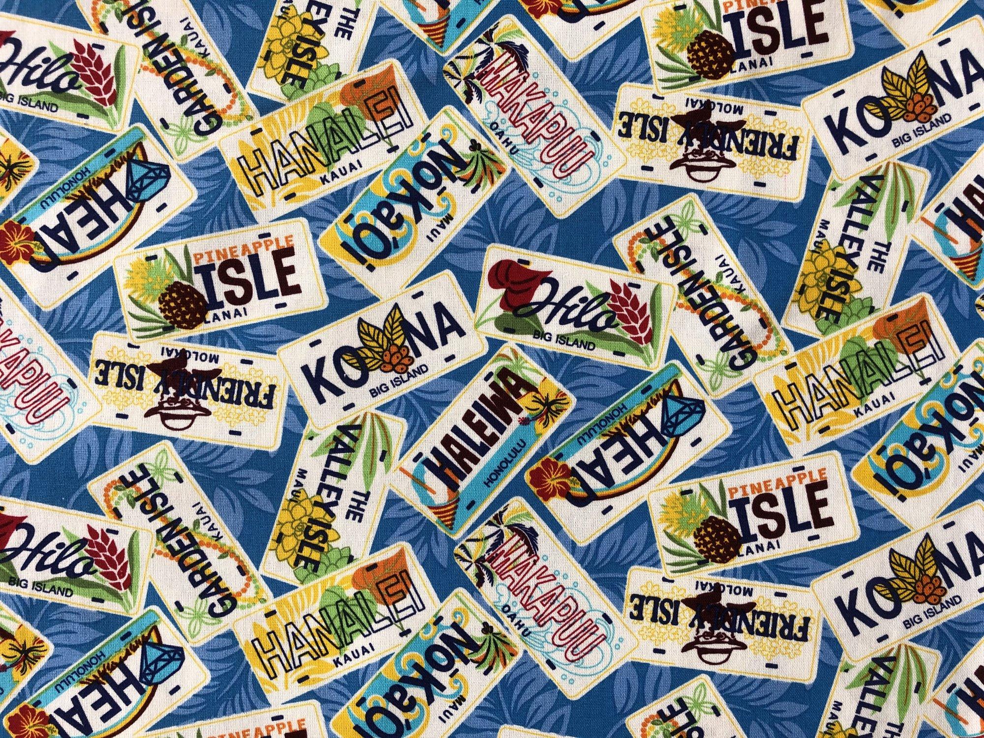 Hawaiian License plates on Blue canvas