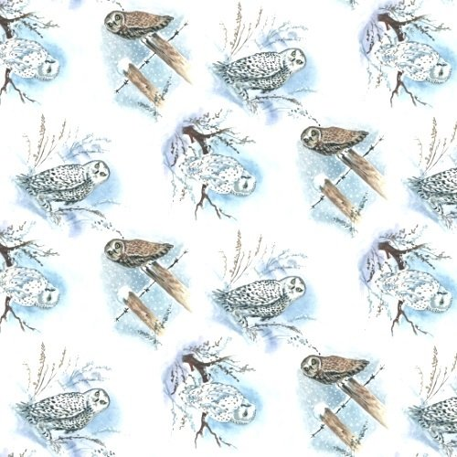 Blank Quilting - Snowscapes - Owls