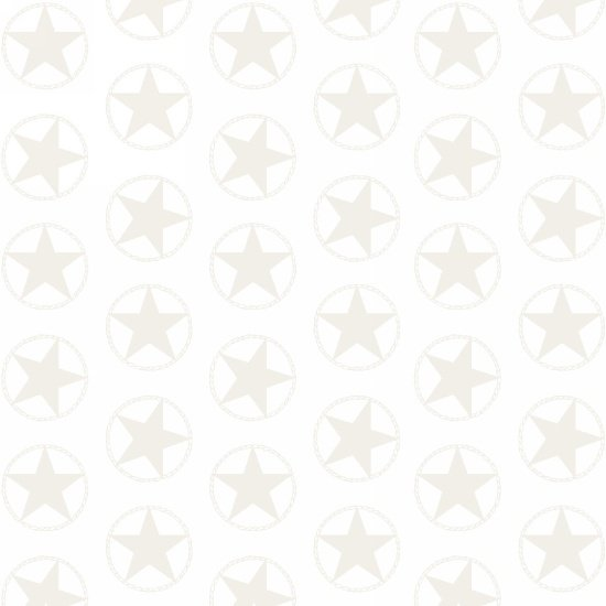 Blank Quilting Western Whites -  Stars