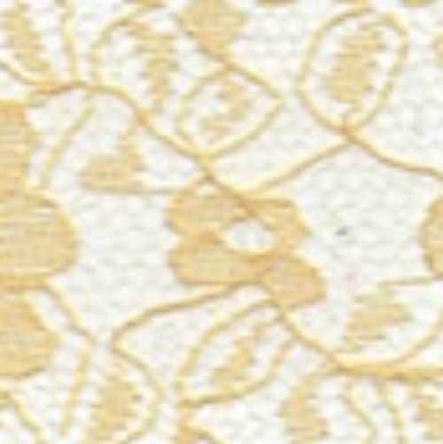 Raschel Allover Lace 60 100% Polyester Gold