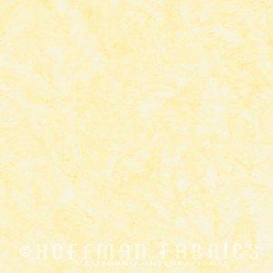 1895 510 Plumeria
