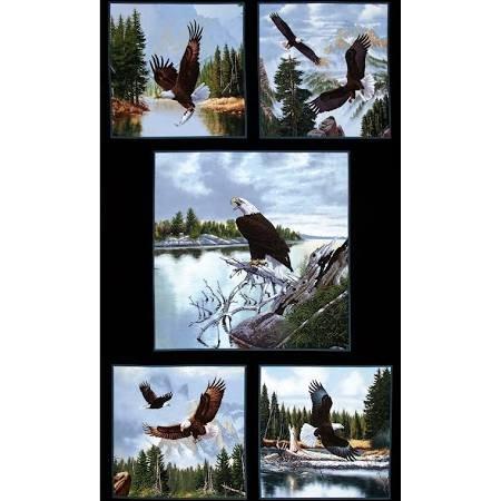 Eagle - 5 Scene Panel