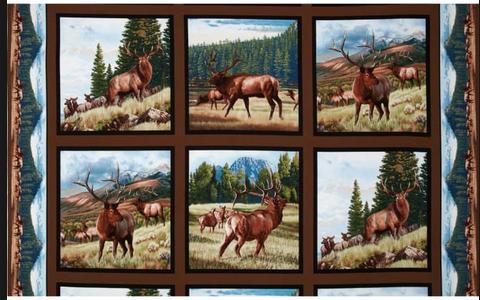 Elk Panel - 6 scenes