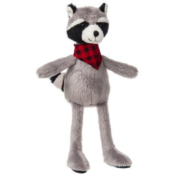 Twin Woods Raccoon
