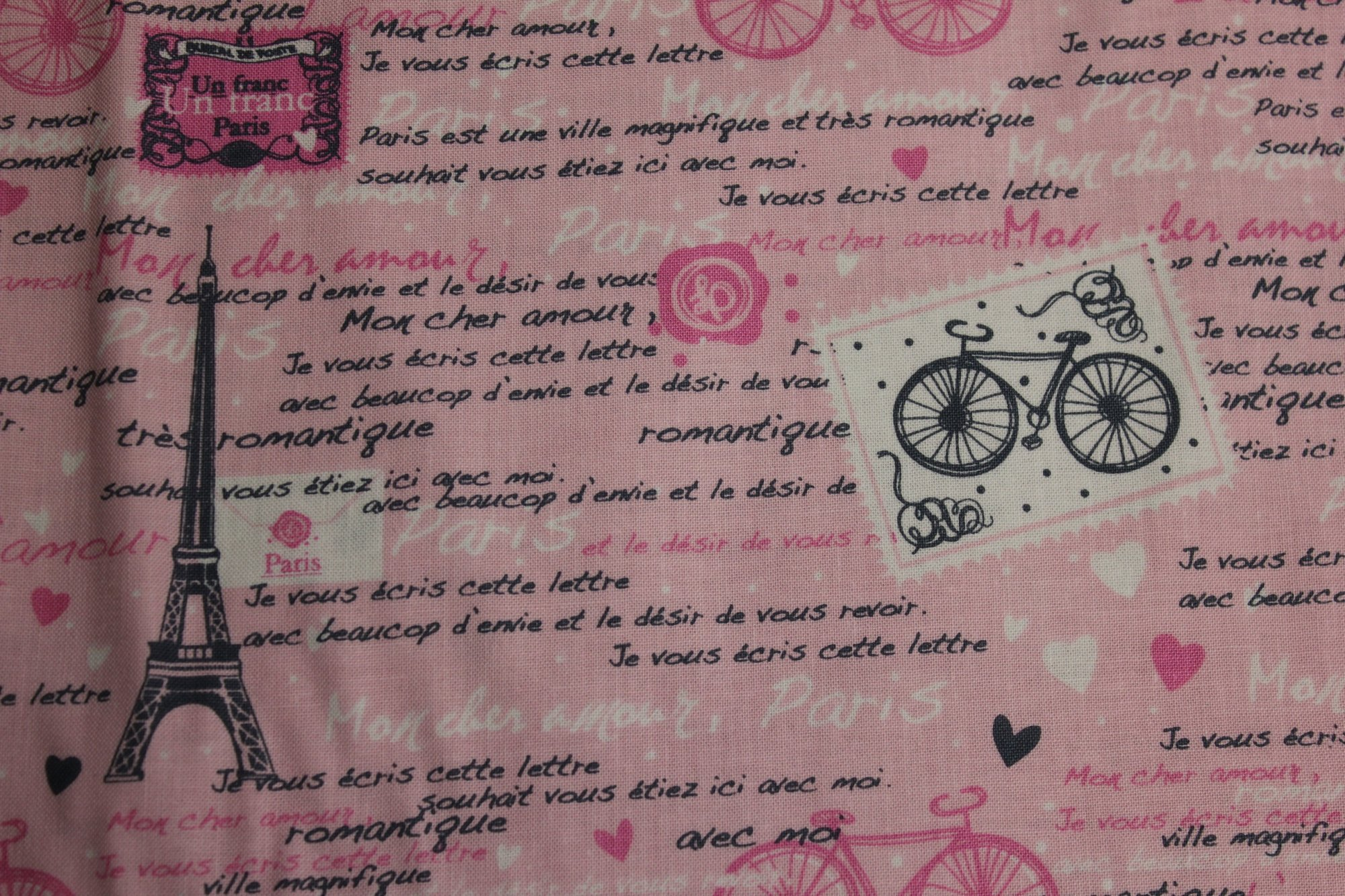 Fun - Paris/Pink - by Timeless Treasures
