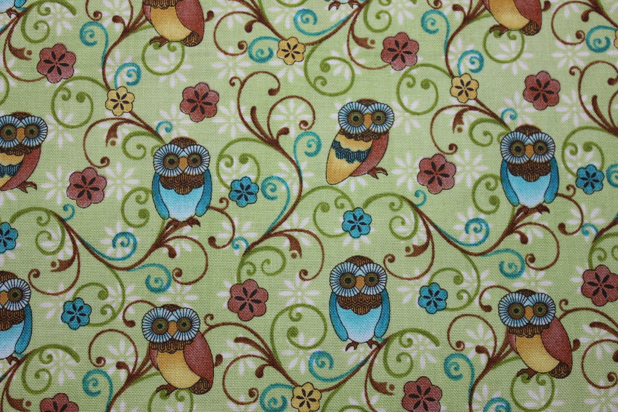 Who's Who Owl with Swirls by Paintbrush Studio