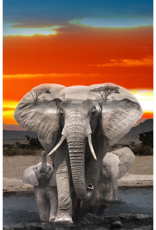 Elephants at Sunset Digital Panel by Hoffman Fabrics