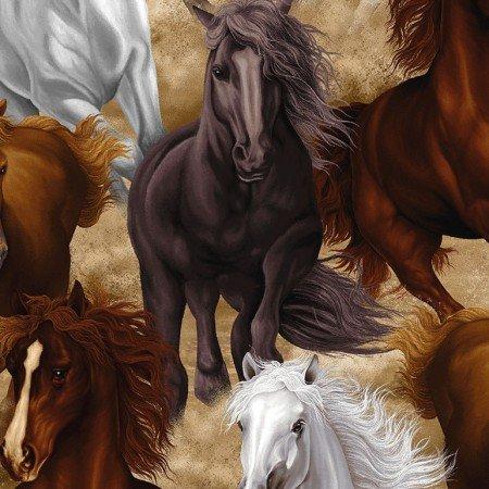 Horse Multi